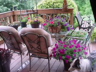 Log Chalet PetFriendly,Creek,Pond/Summer Bookings