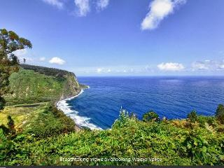 Waipio Ridge Home, Island of Hawaii