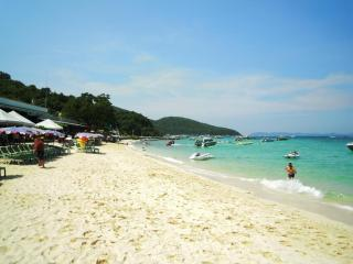 Koh Larn Island is a short boaty ride away a great day trip, clean water and fresh sea food!