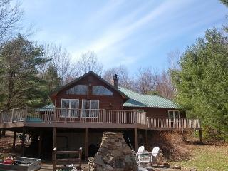 Great Sacandaga Lake Front Home with Dock Day, NY