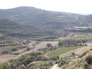 CASA PERICO, San Martin de Unx