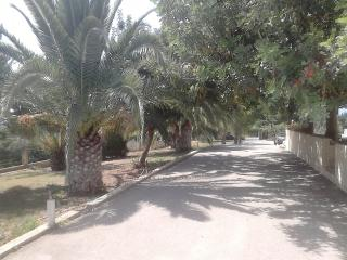 Villa Dimitris, Drepano