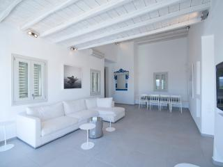 Mykonos Beautiful Modern Villa in Agia Sophia
