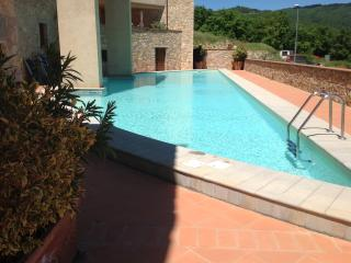 Spacious Chianti apartment with pool access, terrace and outdoor dining area