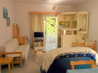 One Bedroom Apartment in Chloraka Paphos