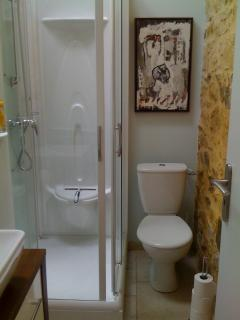 Shower room with toilet (bathroom 1)