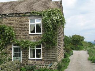 Foxglove Cottage  - Wildflower Cottages - Ashover near Matlock