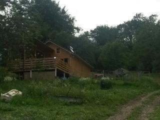 Fully Equipped Chalet in the Woods, Bradetu, Arges