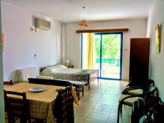 Studio Apartment in Chloraka Paphos, Chlorakas
