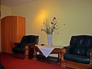 Vitan lux apartment,next to Rin Grand hotel.