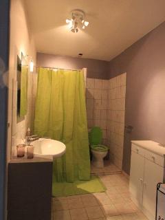 La salle d'eau avec les toilettes