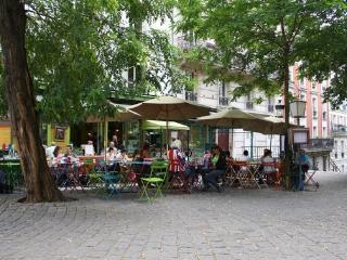 parisbeapartofit - 2BR 1BA (+terrace) Rue Duhesme-Montmartre (200)