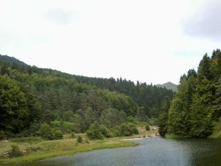 Arese II. Cerca selva de Irati, Jaurrieta
