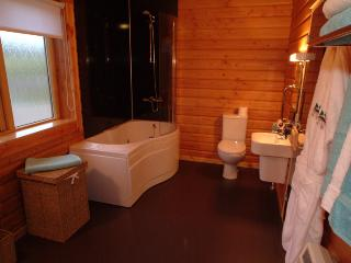 Bathroom with sauna cabin one