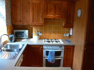 Kitchen with gas hob and electric fan oven