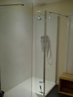 Walk in shower to the ensuite for the master bedroom.
