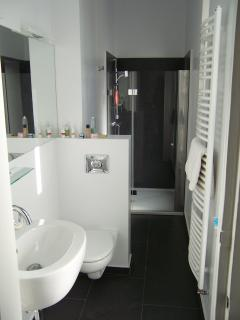 The bathroom as seen from the dining area