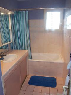 Family bathroom with over-bath shower and large vanity unit for toiletries storage