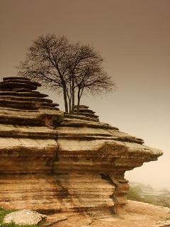 El Torcal, a must visit for any nature lover, only 40 minutes drive away.