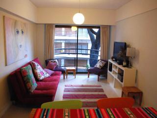 Amazing Apartment in Belgrano, Buenos Aires