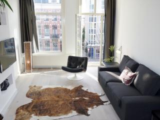 Just renovated, bright apartment by the Vondelpark, Amsterdam