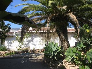Mature tropical gardens with large private pool, Motril