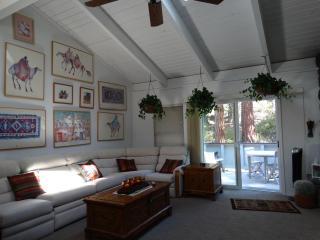 Lake Tahoe (North Shore) Townhouse - Light, Bright, Incline Village