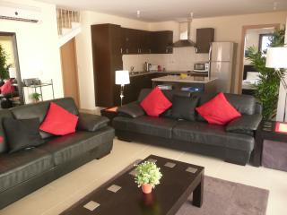 Spacious living area / kitchen - exceptionally well-furnished and equipped
