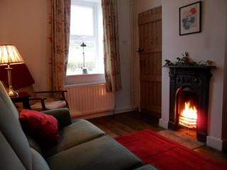 Sitting room with open fire and freesat TV