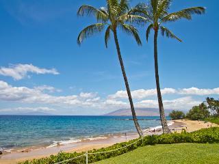 Wailea Elua 2BR Oceanview Condo, Beachfront Resort