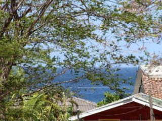 Oceannestbb 'más que un bed and breakfast', Golfo de Papagayo
