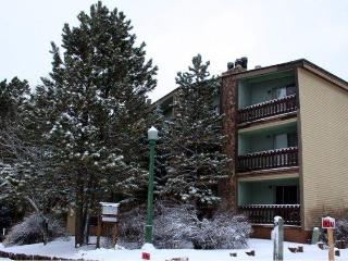 Spacious!  2 Bed 2 Bath Ski & Bike Condo in Angel, Angel Fire