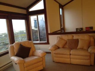 Monterey Beachfront, Oceanfront Breath Taking Views, 100 feet to ocean, Wakeup and fall asleep to sound of Water!!