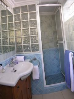 En-suite bathroom with walk-in shower
