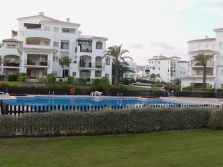 view from garden to pool