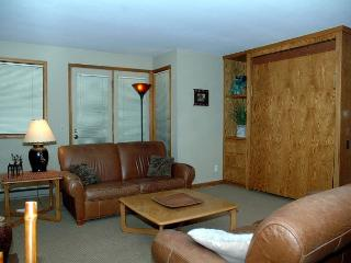 Upgraded Ski in Ski out two bedroom at the full service Iron Horse Resort., Winter Park