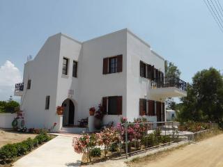 Iliana by the beach - Naxos, Cyclades, Greece  (Aegean island in Greece)