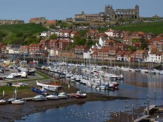 Captains Retreat, Whitby