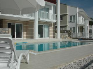 Pool accessed from pool lounge and bedroom 4
