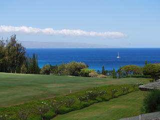 Kapalua Ridge Villas  R2522