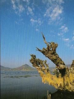 Lake salagou 3