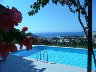 Private Pool with Stunning Views out to Sea