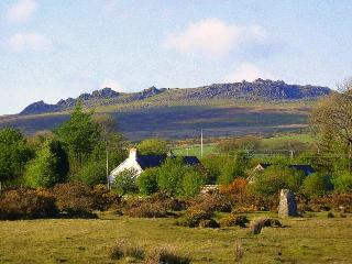 View from the moor to Trallwyn Cottages + Carn Meini