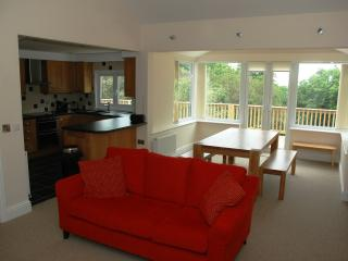 Open Plan Lounge/Kitchen/Dining Area