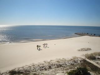Beautiful 2 bedroom / 2 bath condo on beach with Gulf view!