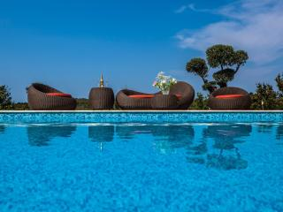 Villa Istria, Buje