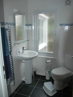 Shower room (with thermostatic overhead shower)
