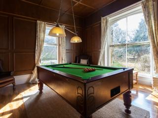 The games room with pool table and quiz machine