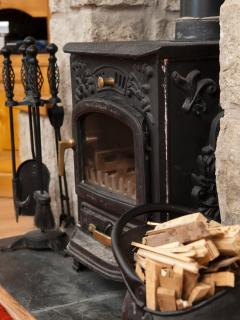 Wood Burning Stove with Logs Provided