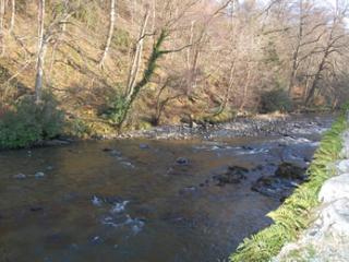 The river Greta, viewed from Greta Bank Cottage